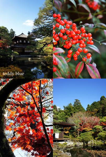 fall walking in Kyoto 2012  秋の京都 紅葉散策_e0253364_2214724.jpg