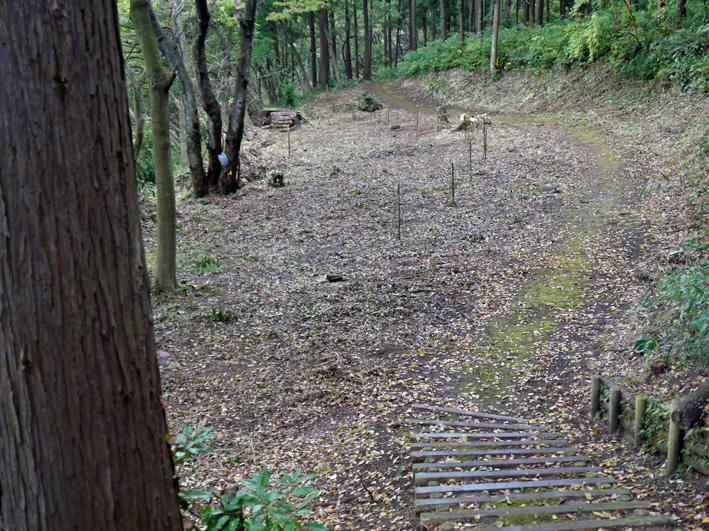 雨中、3人で決行!:11月六国見山森林公園の定例手入れ_c0014967_1455116.jpg