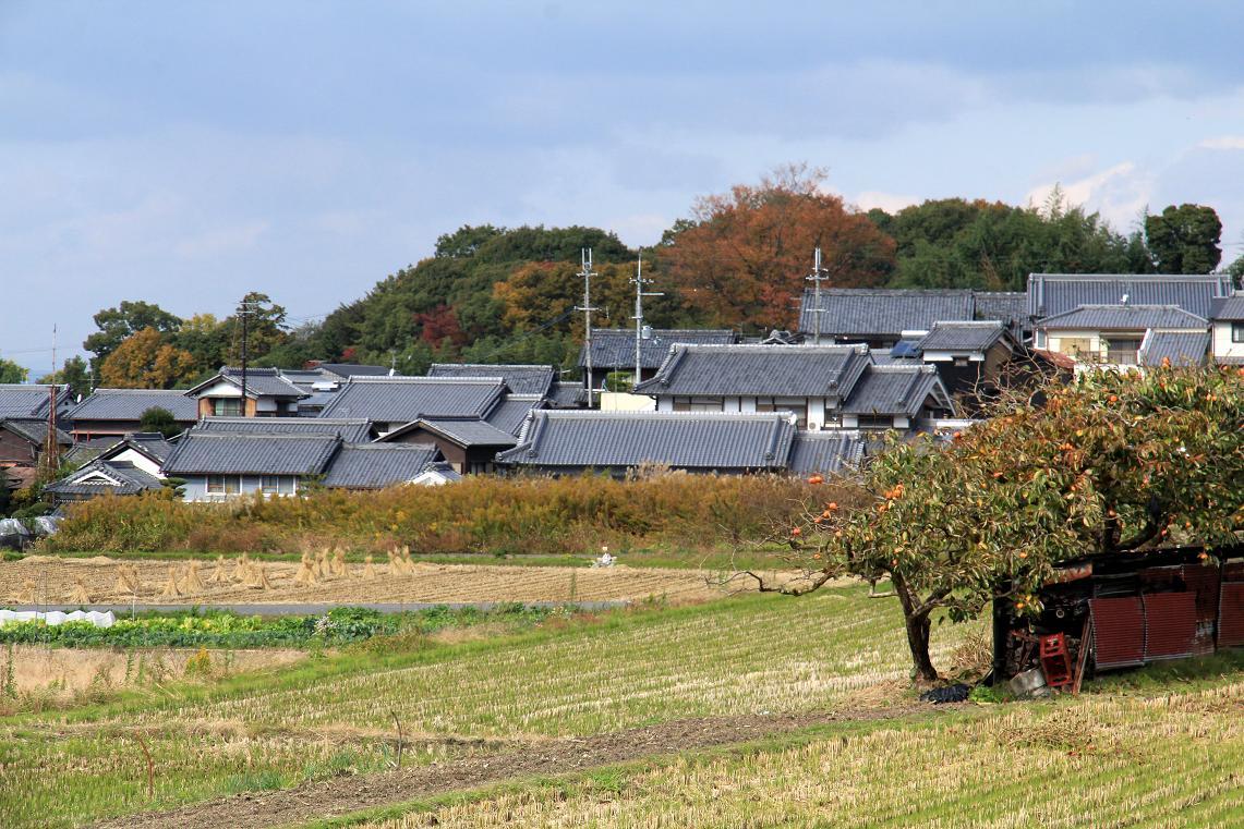 「山の辺の道」散策  ~日本最古の幹線道路~_a0107574_725260.jpg