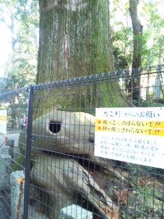 高尾!!…山に行って来た(□_□)ナノダヨ_e0057018_024317.jpg