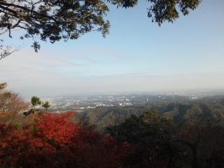 高尾!!…山に行って来た(□_□)ナノダヨ_e0057018_02434.jpg