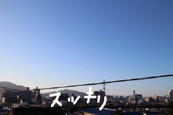 b0136826_22474440.jpg