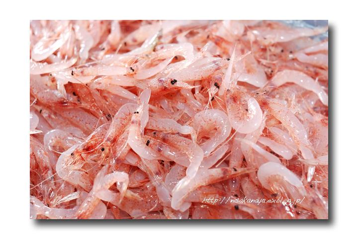 サクラエビ/桜海老:桜蝦 .......... 旨味の濃い 美味しい海老ですよね!_d0069838_2122713.jpg