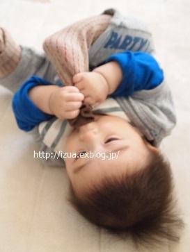 6ヶ月の息子のこと_e0214646_16445424.jpg