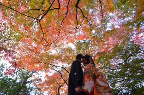京都紅葉和装ロケーション_e0046950_20415358.jpg