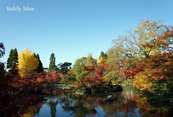 fall walking in Kyoto 2012  秋の京都 紅葉散策_e0253364_1304476.jpg