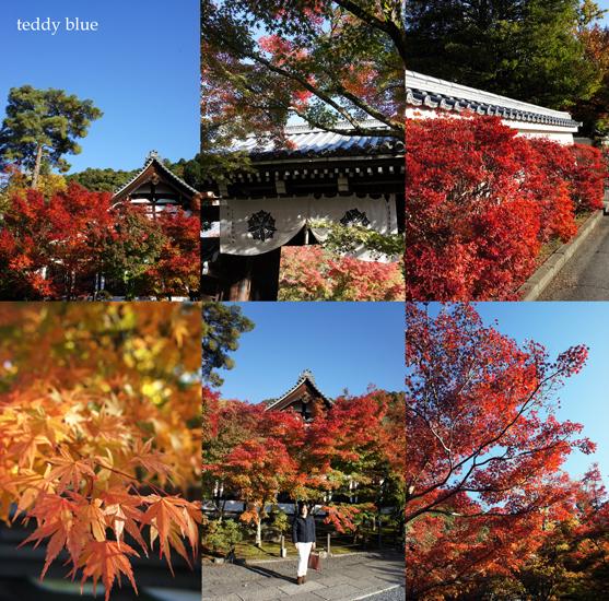 fall walking in Kyoto 2012  秋の京都 紅葉散策_e0253364_131264.jpg