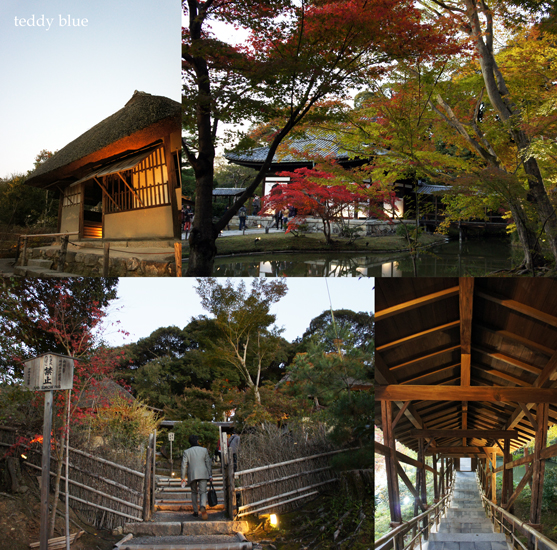 fall walking in Kyoto 2012  秋の京都 紅葉散策_e0253364_13311485.jpg