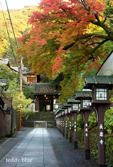 fall walking in Kyoto 2012  秋の京都 紅葉散策_e0253364_13313166.jpg