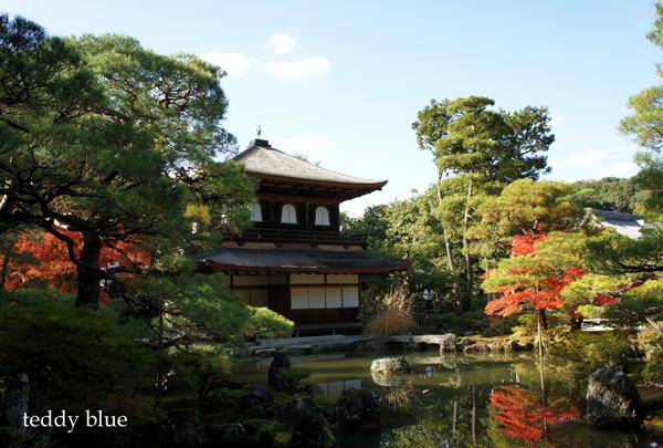 fall walking in Kyoto 2012  秋の京都 紅葉散策_e0253364_15172169.jpg