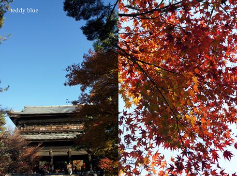 fall walking in Kyoto 2012  秋の京都 紅葉散策_e0253364_15415877.jpg