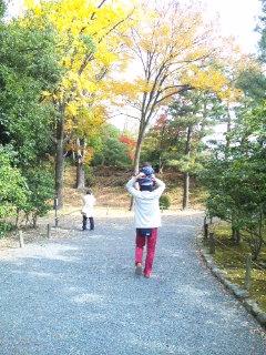 京都の紅葉♪_c0164268_20423626.jpg