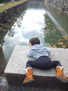 京都の紅葉♪_c0164268_20423668.jpg