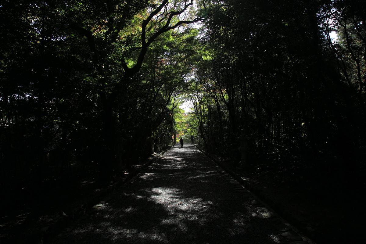 紅葉 2011  西山  大原野神社_f0021869_0104532.jpg