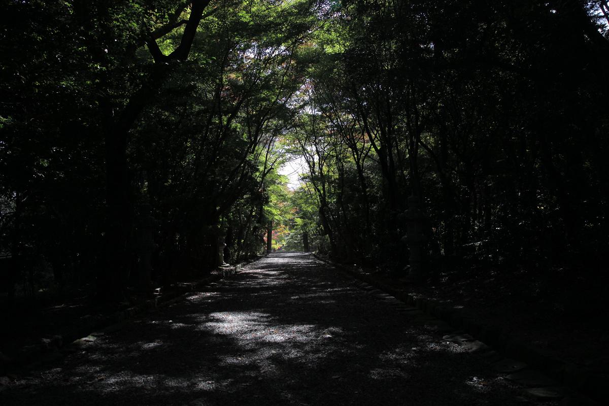紅葉 2011  西山  大原野神社_f0021869_0113842.jpg