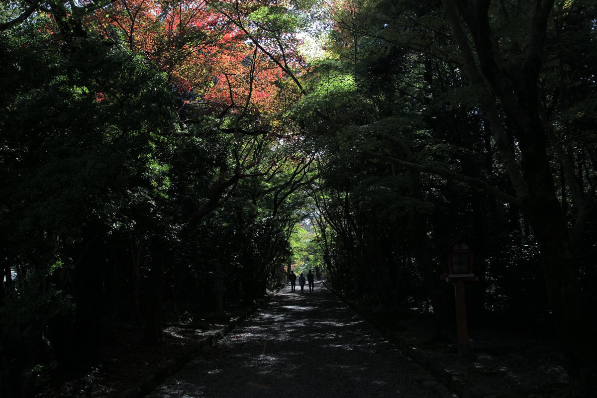 紅葉 2011  西山  大原野神社_f0021869_0125610.jpg