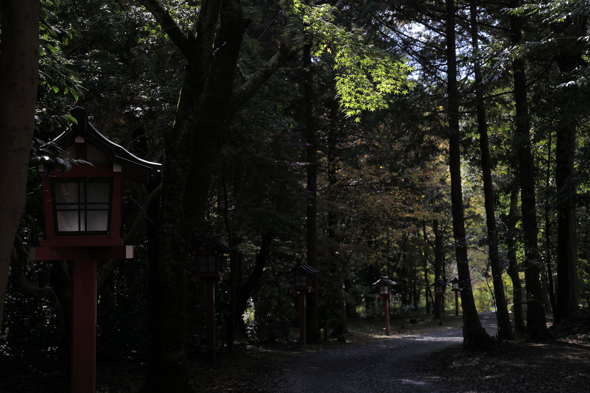 紅葉 2011  西山  大原野神社_f0021869_0143976.jpg