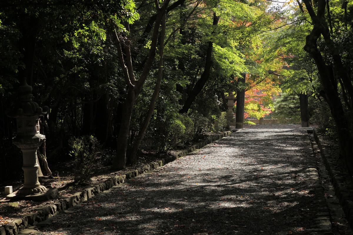紅葉 2011  西山  大原野神社_f0021869_0154318.jpg