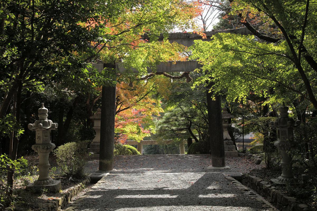 紅葉 2011  西山  大原野神社_f0021869_0162579.jpg