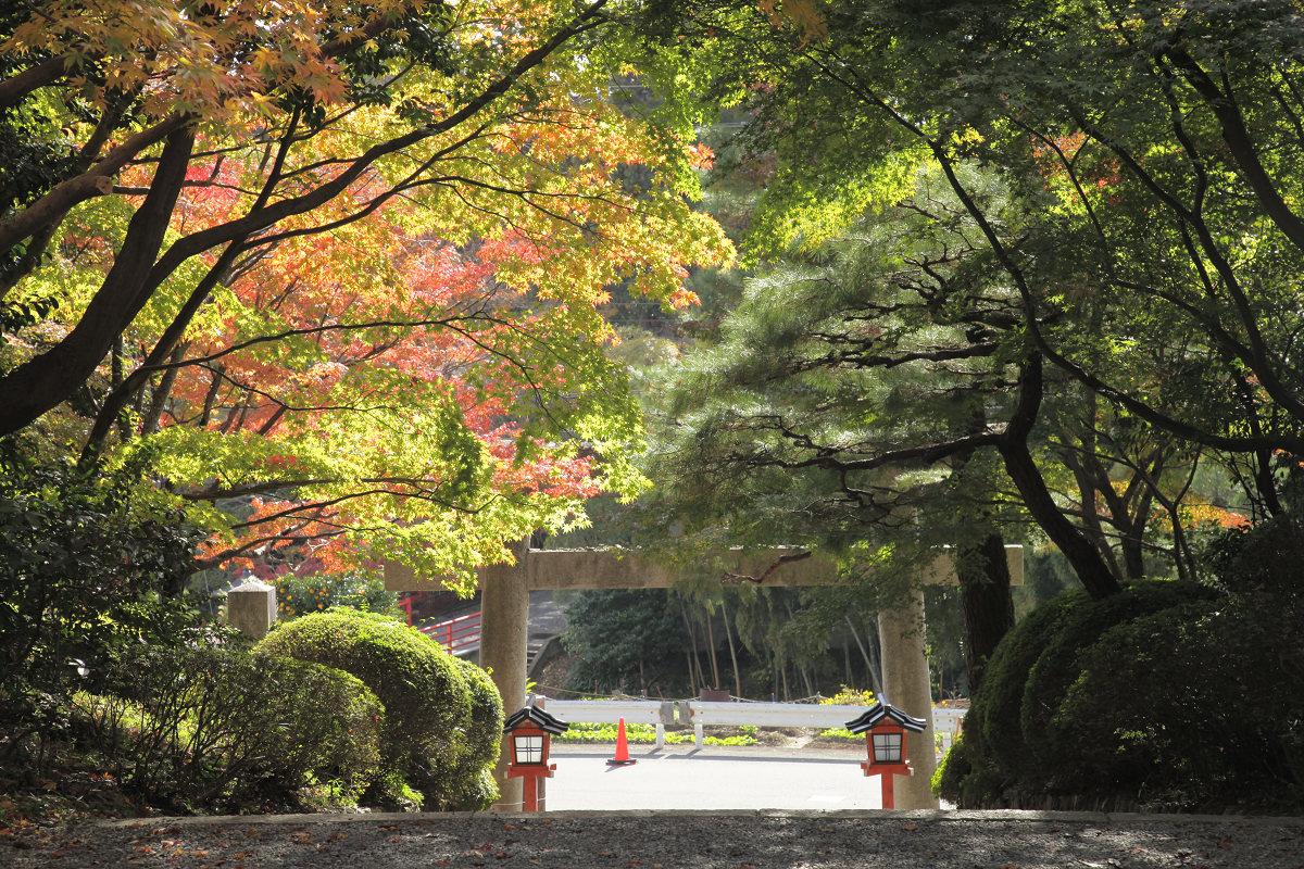 紅葉 2011  西山  大原野神社_f0021869_0171040.jpg