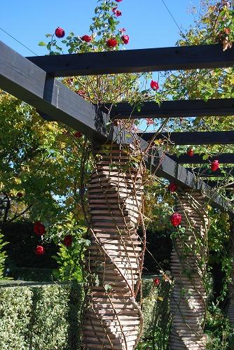 秋のボタニックガーデン : 秋バラ編_c0124100_17331978.jpg