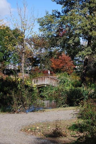 秋のボタニックガーデン : ウッドランド編_c0124100_183776.jpg