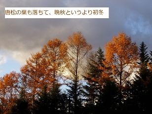 b0200310_18344860.jpg