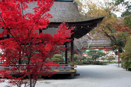 紅葉だより32 上賀茂神社_e0048413_17594896.jpg