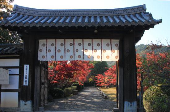 紅葉だより34 勧修寺(かじゅうじ)_e0048413_1901214.jpg