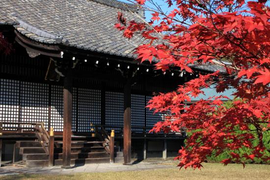 紅葉だより34 勧修寺(かじゅうじ)_e0048413_1904395.jpg