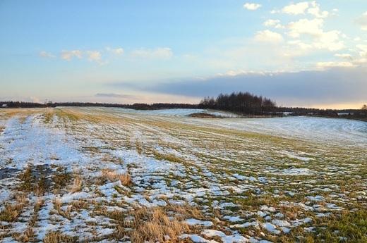 2012年11月21日(水):思いのほか融けない雪[中標津町郷土館]_e0062415_2018634.jpg