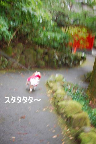 f0214121_951169.jpg