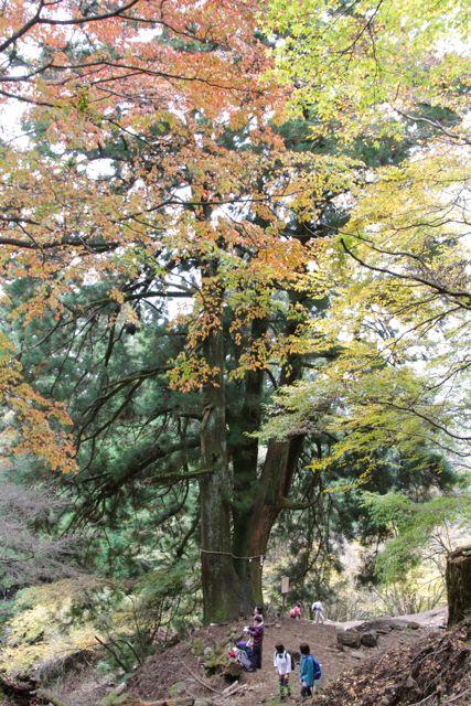 大山詣_f0160063_0534537.jpg