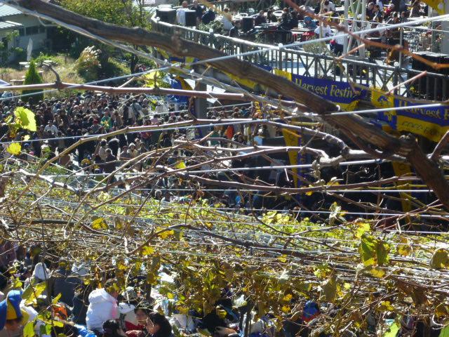 オトナの遠足 ココファーム収穫祭2012_c0100865_6432881.jpg