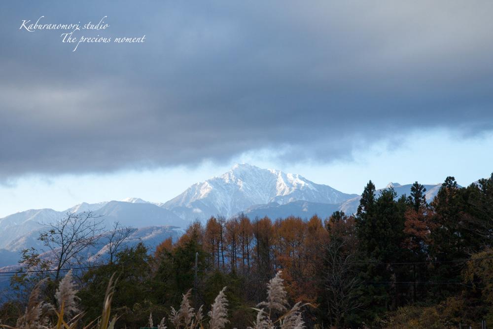 厚い雲で朝日は見られなかったけど_c0137403_1771362.jpg