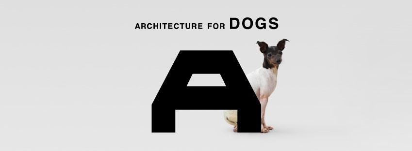 DIYでつくる建築_c0173405_1238255.jpg