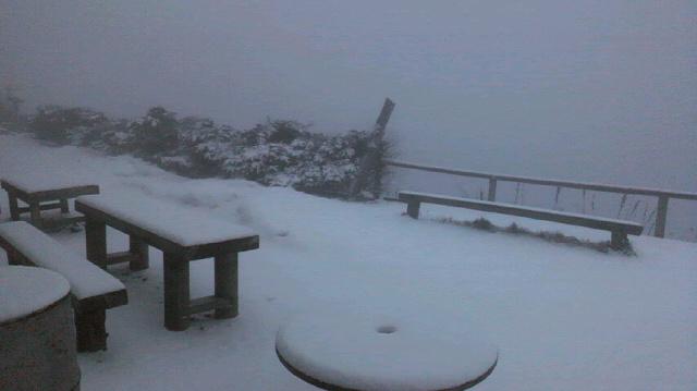 積雪です。気温は0℃。_c0089831_6542164.jpg