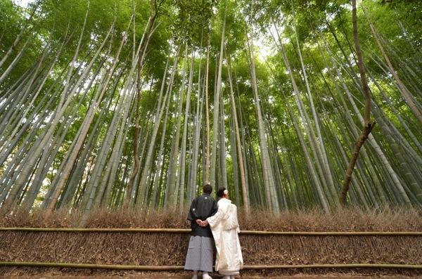 京都嵯峨野竹林和装ロケーション_e0046950_18534936.jpg