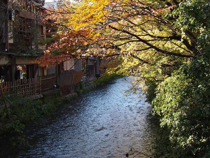 祇園 白川_c0180971_22161856.jpg