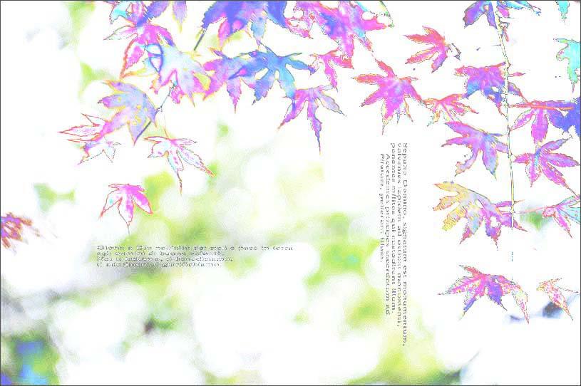 f0198771_08898.jpg