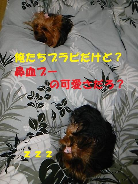 b0135079_1817578.jpg