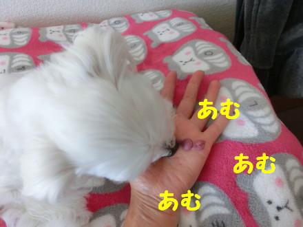 b0193480_14221817.jpg
