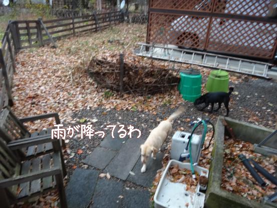 火事_f0064906_17501545.jpg