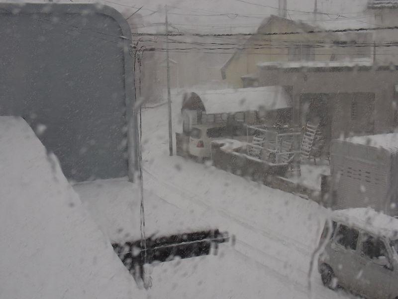 本格的な雪_c0025115_22313061.jpg