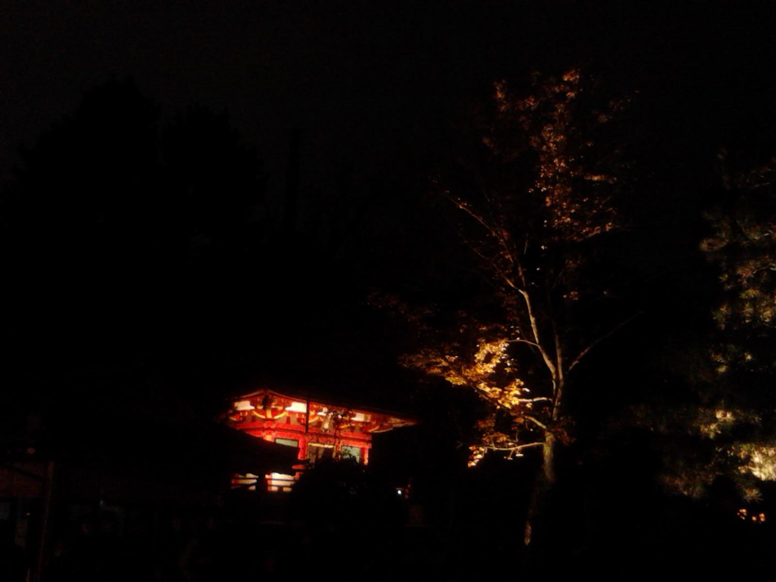 京都_e0051428_1853037.jpg
