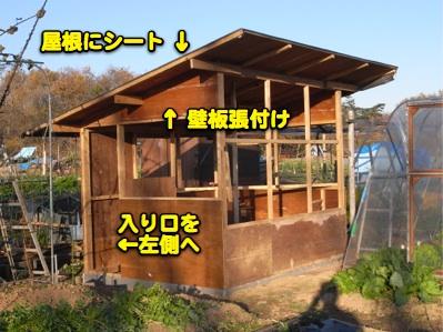 鳥小屋建築中 6_c0063348_8112.jpg