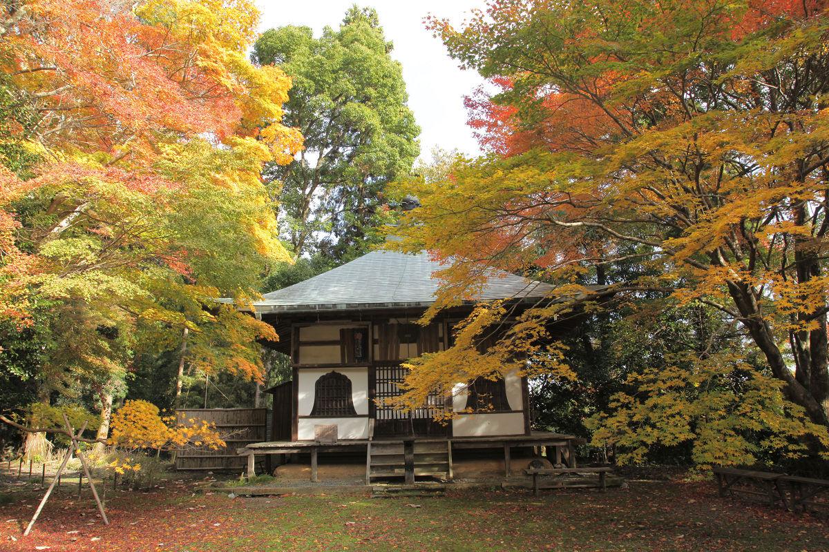 紅葉 2012  西山  金蔵寺_f0021869_22424013.jpg
