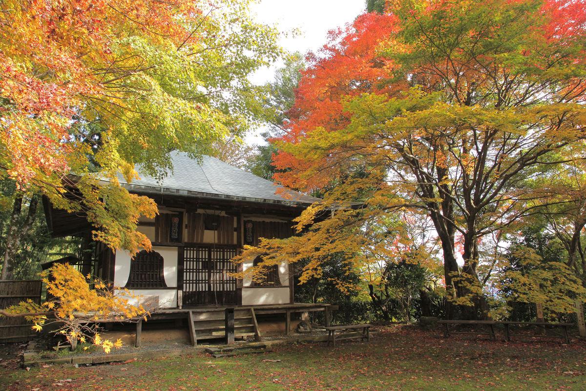 紅葉 2012  西山  金蔵寺_f0021869_22442616.jpg