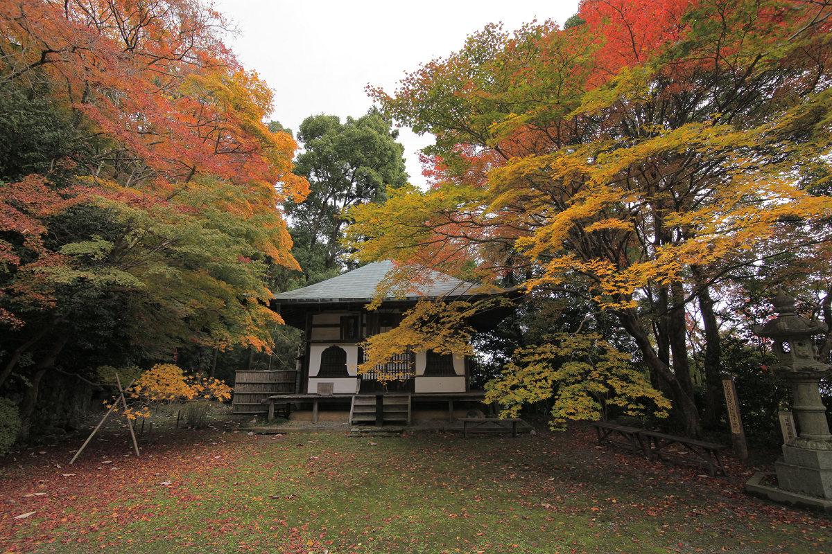 紅葉 2012  西山  金蔵寺_f0021869_22492431.jpg