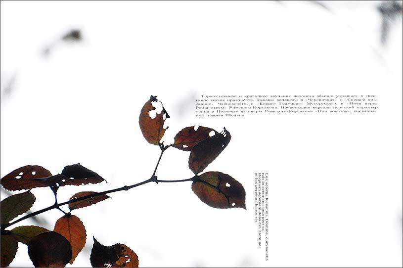 f0198771_06721.jpg
